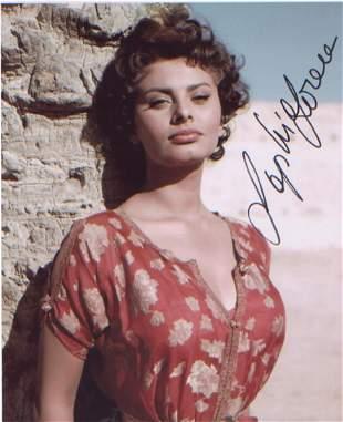 Sophia Loren signed 10 x 8 inch photo . Good condition.