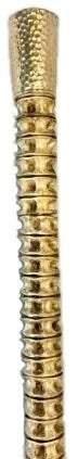 Shark Spine Cane With 14 Karat Gold Handle