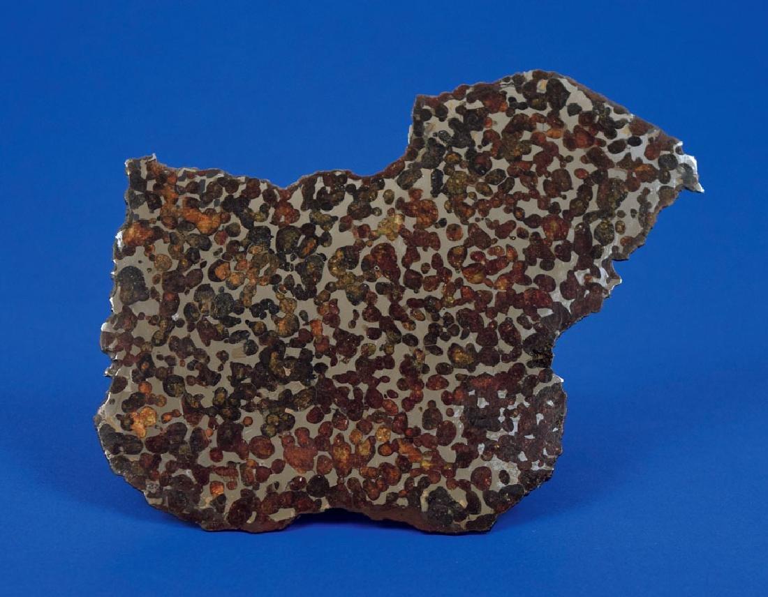 Sericho Pallasite Meteorite Slice