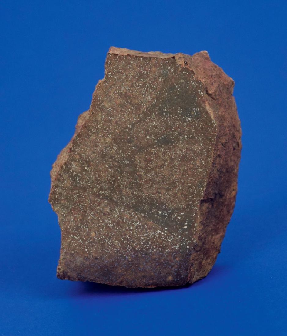 El Boludo Stone Meteorite End Cut
