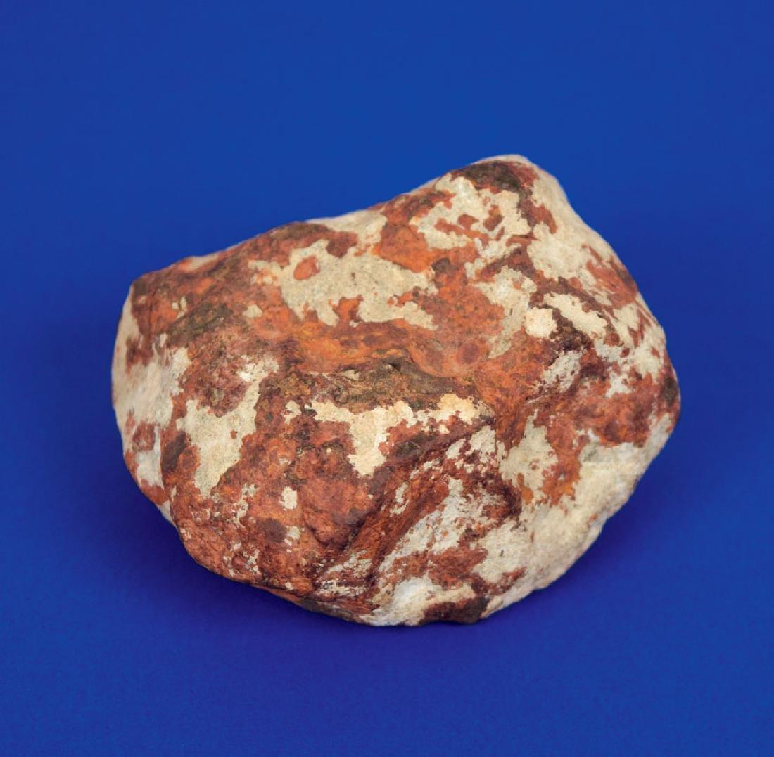 El Boludo Stone Meteorite Slice and Whole Individual