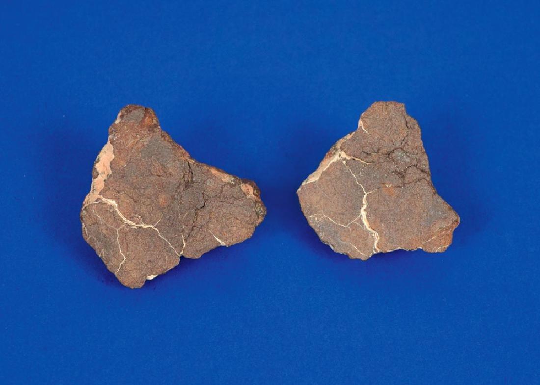 Al Haggounia Stone Meteorite