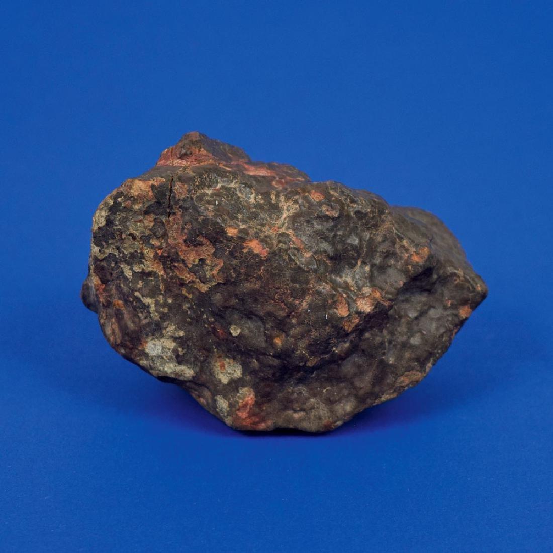 Northwest Africa Stone Meteorite