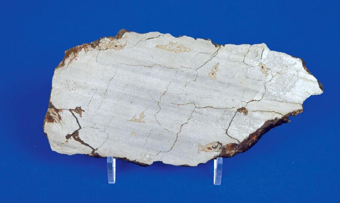 Agoudal Iron Meteorite Slice