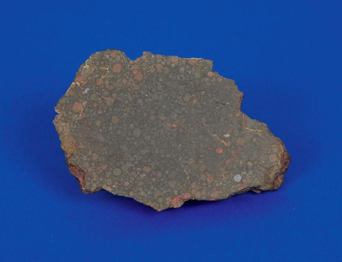 Northwest Africa Stone Meteorite End Cut