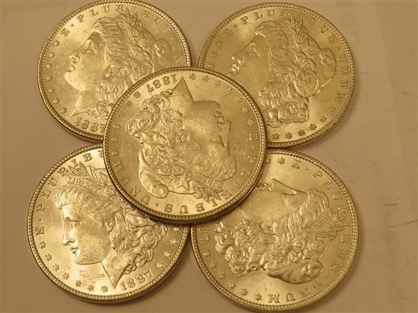 US 1887 Morgan Silver Dollar Coin Lot of 5