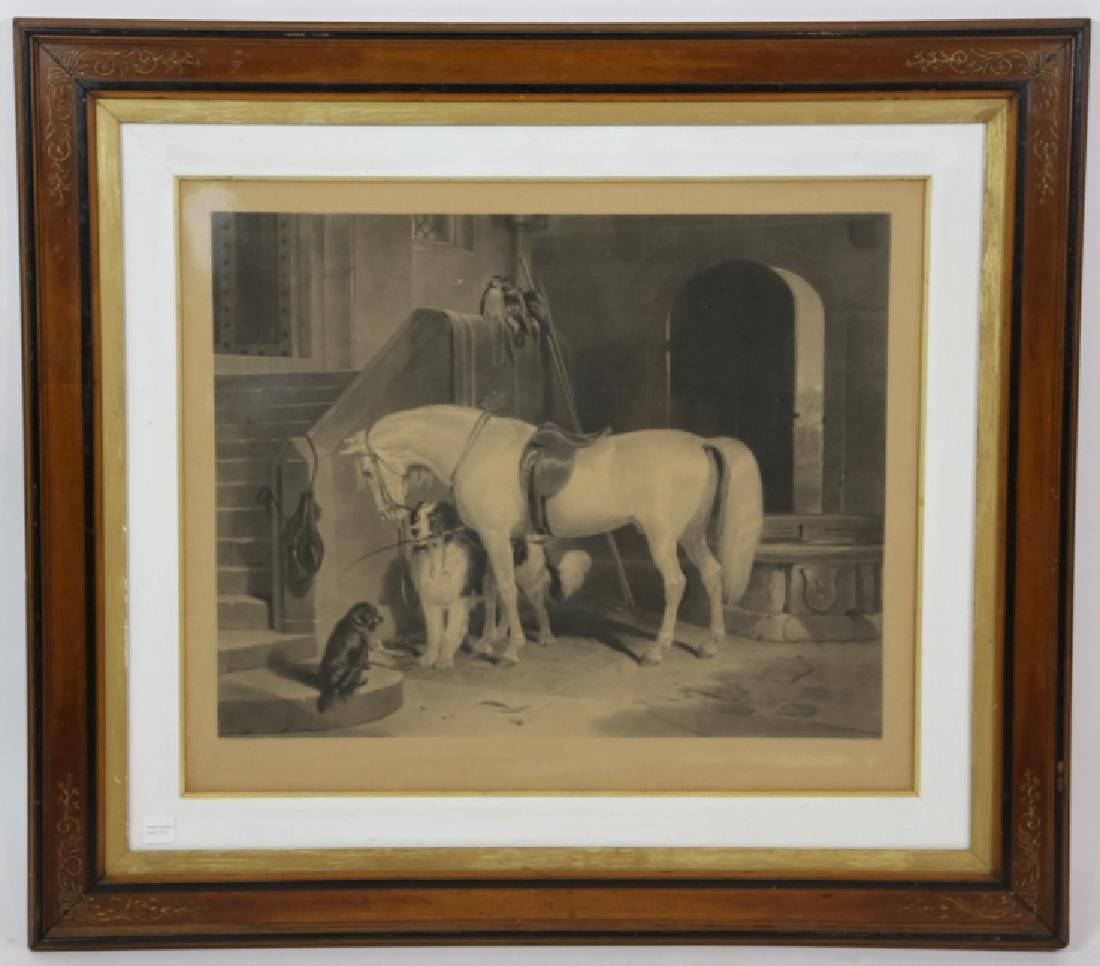 19TH C ENGRAVING OF HORSE AND DOGS