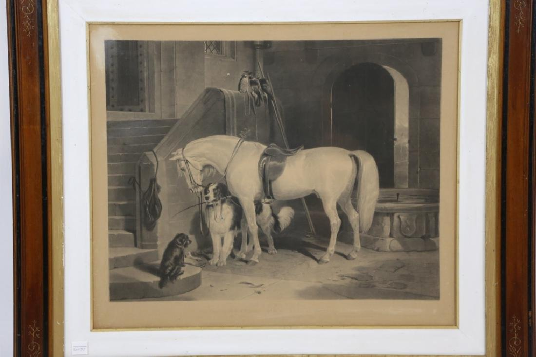 19TH C ENGRAVING OF HORSE AND DOGS - 3