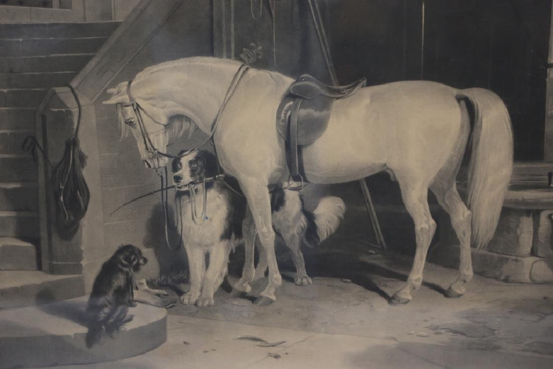 19TH C ENGRAVING OF HORSE AND DOGS - 4