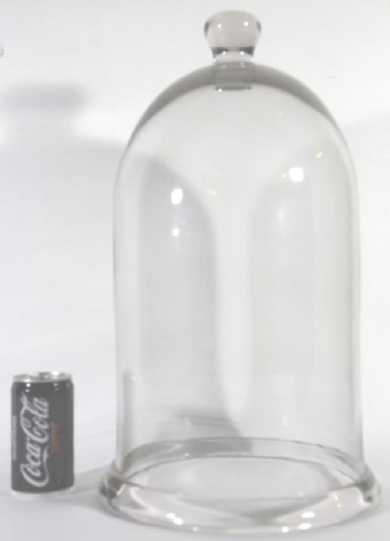 ANTIQUE GLASS DOME BELL JAR - 5