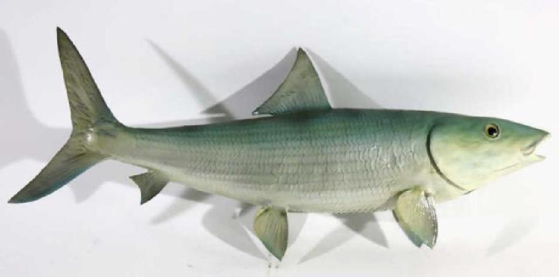 ANTIQUE STRIPER FISH MOUNT