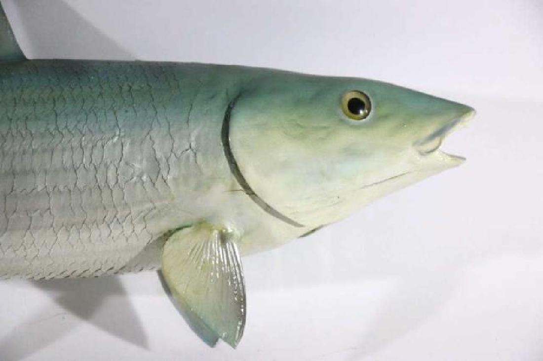 ANTIQUE STRIPER FISH MOUNT - 2