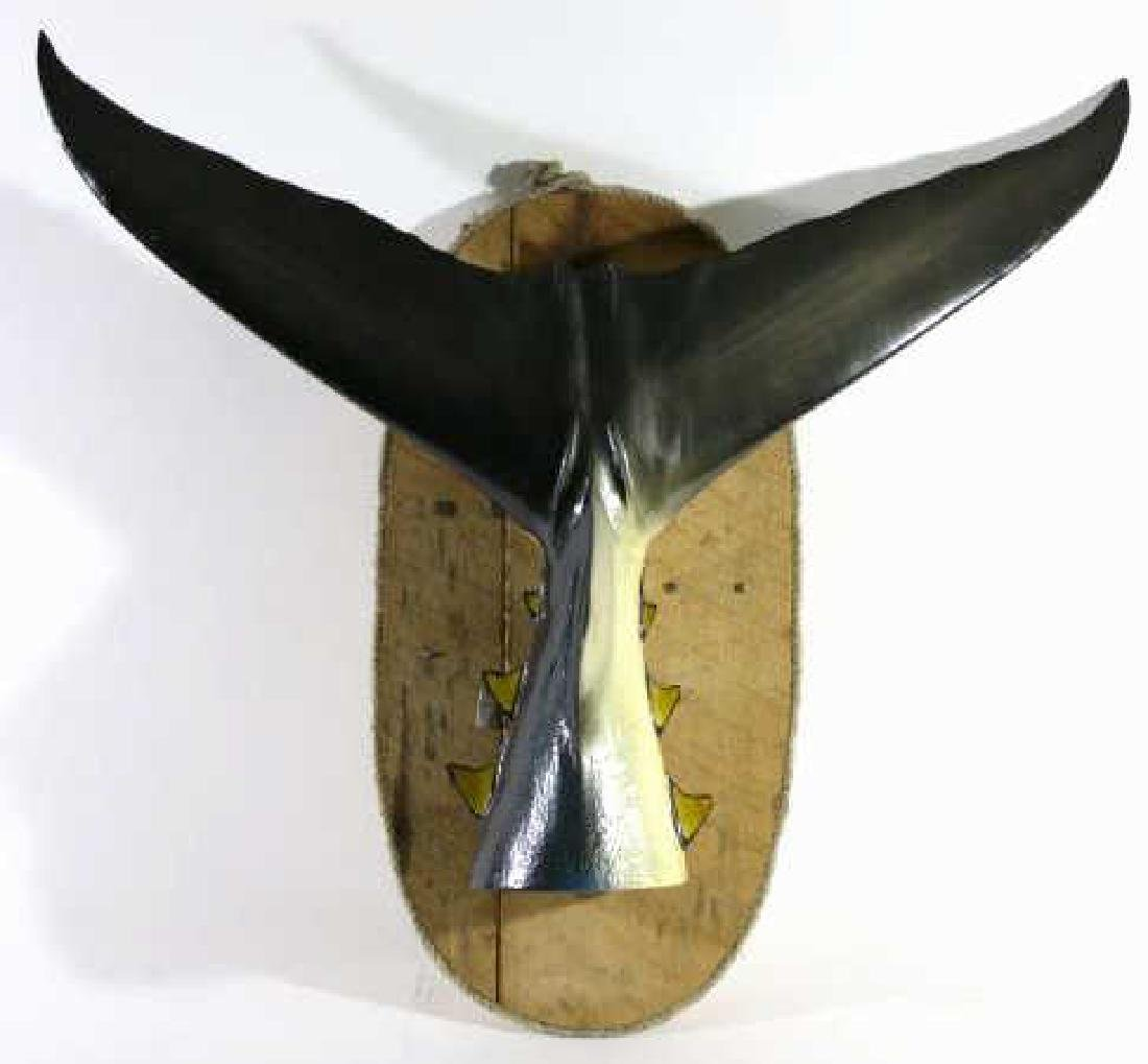 ANTIQUE MARLIN TAIL  FISH MOUNT - 2