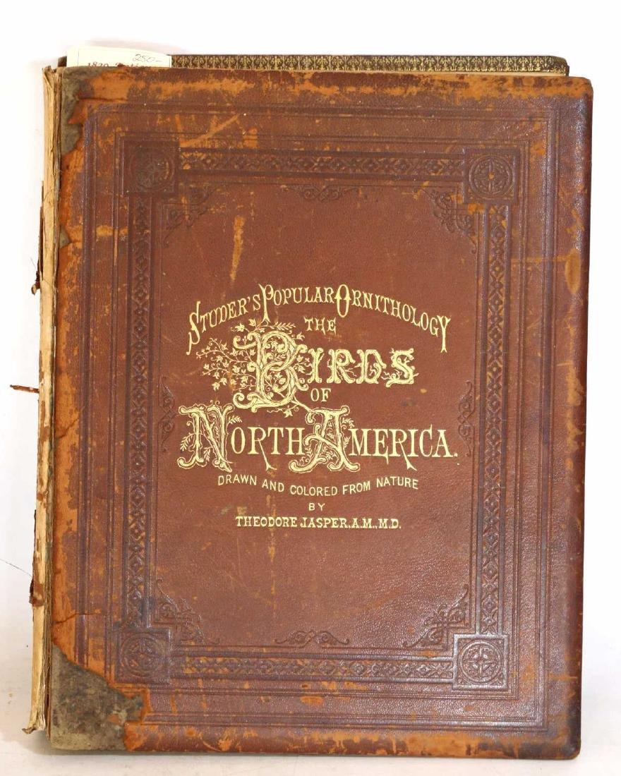 "THEODORE JASPER ""BIRDS OF NORTH  AMERICA"" PICTORAL"