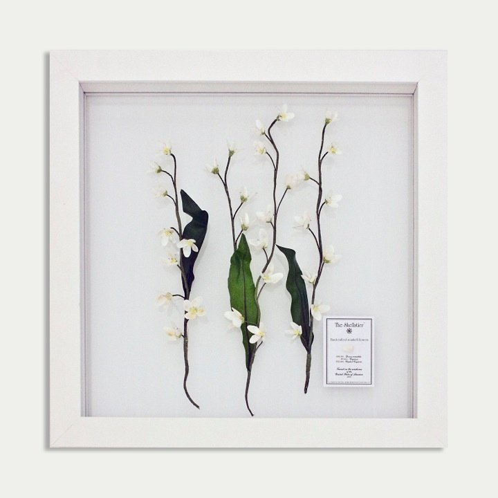 "15: Framed flowers:""The Shellatier"" by Karen Robertson"