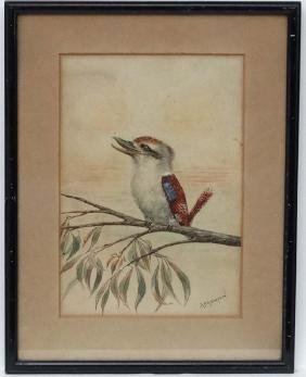 A P H Simpson  early XX Australia, Watercolour,