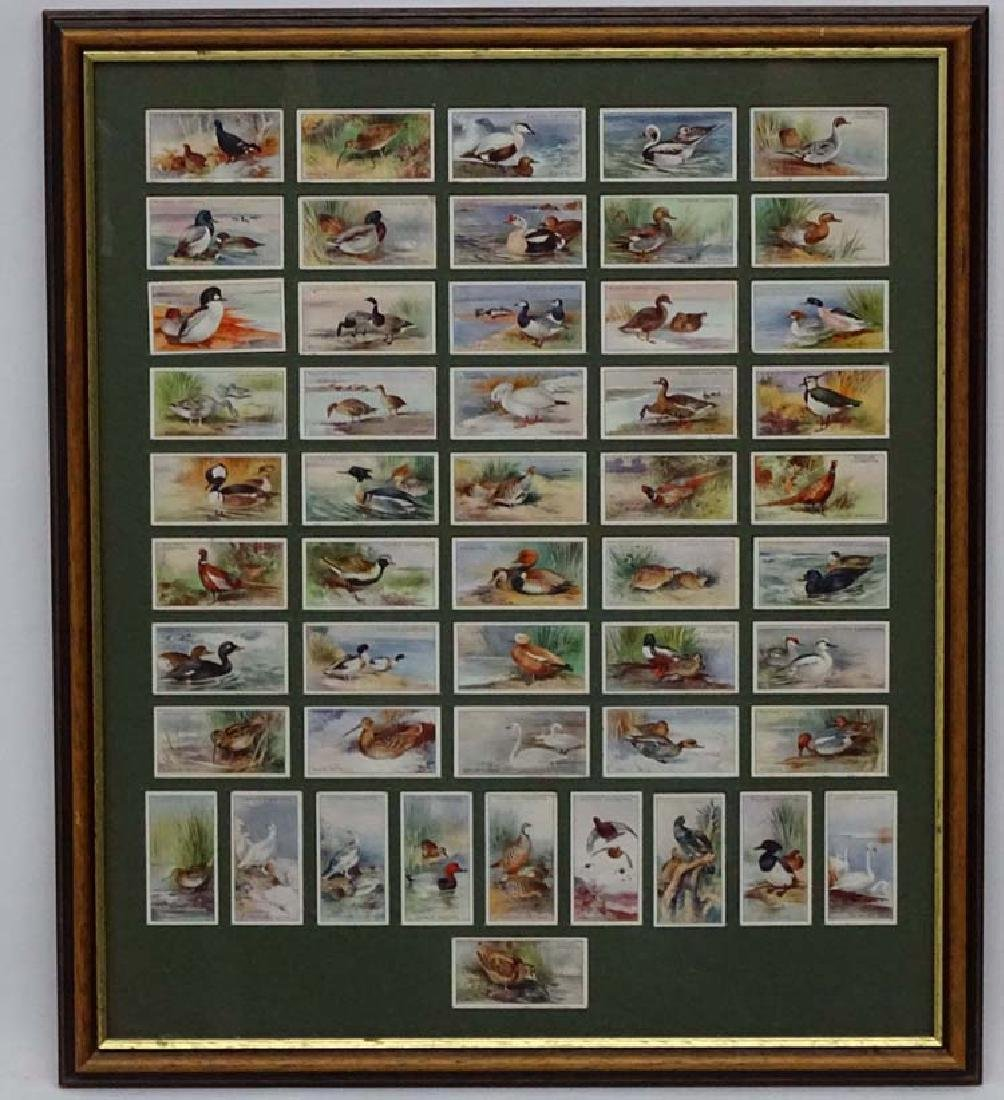 Players Cigrette cards, Game Birds and Wild Fowl,  A