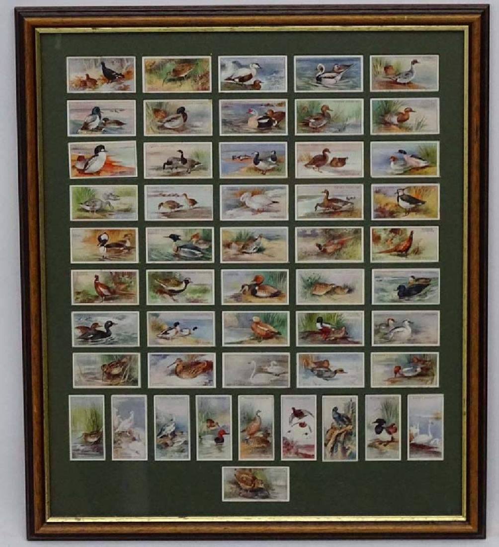Players Cigrette cards, Game Birds and Wild Fowl,  A - 3
