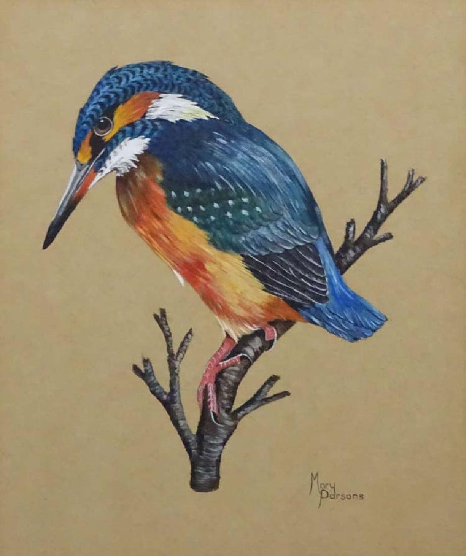 Mary Parsons XIX-XX Avian Portraits, Gouache and - 4