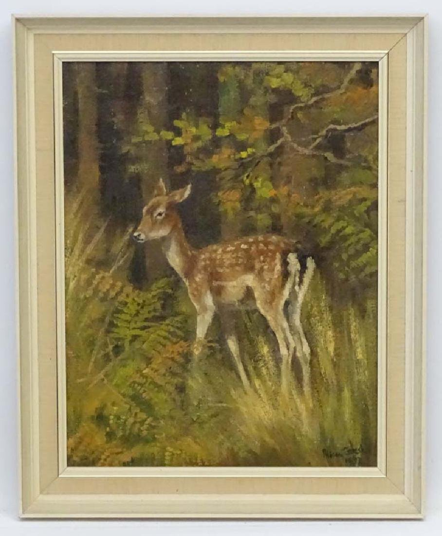 Alison Gilest 1952, Oil on canvas, A young Fallow deer
