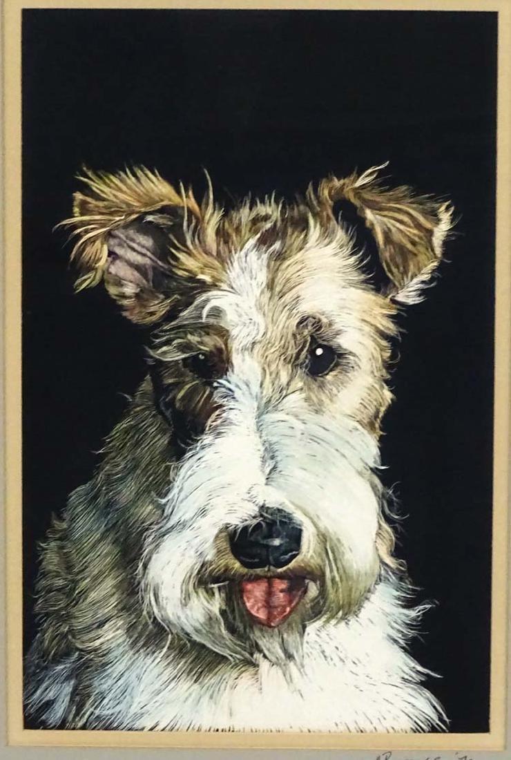 Dog: M Burgess '79, Scraperboard with colour, Portrait - 3