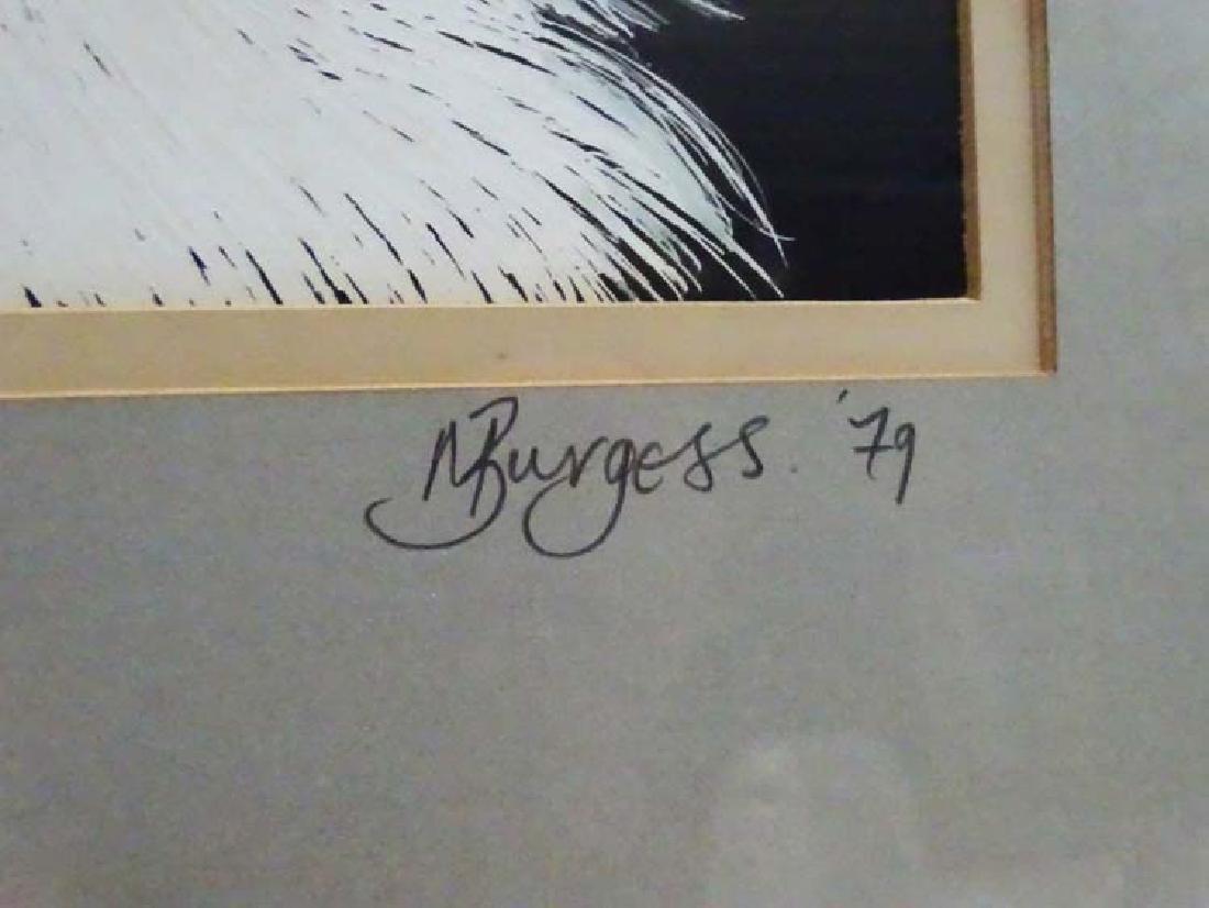 Dog: M Burgess '79, Scraperboard with colour, Portrait - 4
