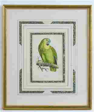 After William Thomas Greene, 19th century, Coloured