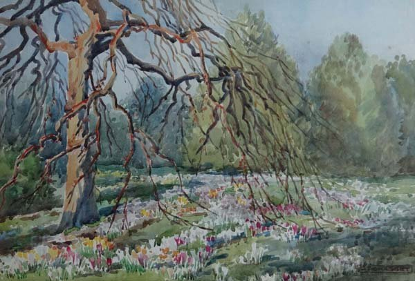 G Thomasset ( early XX ) Watercolour The fist crocuses