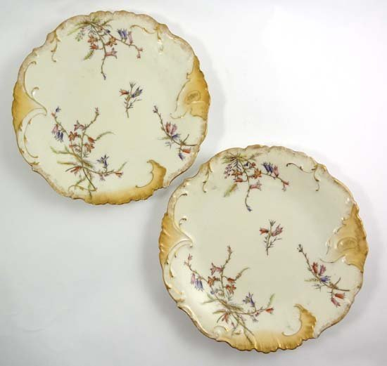 A pair of Limoges porcelain plates, decorated with spra