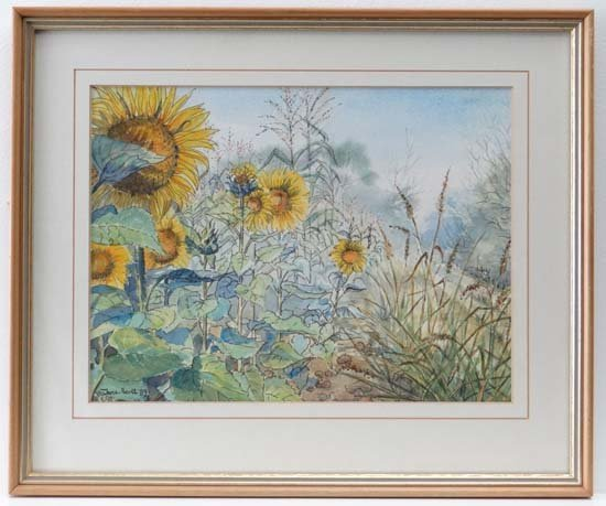 Jane Scott 89 Pen ink and watercolour Sunflowers Signed