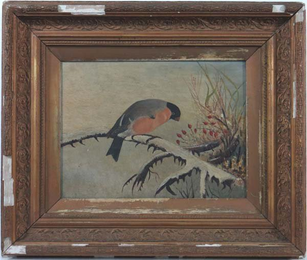 XIX English Ornithological School Oil on canvas A Bullf