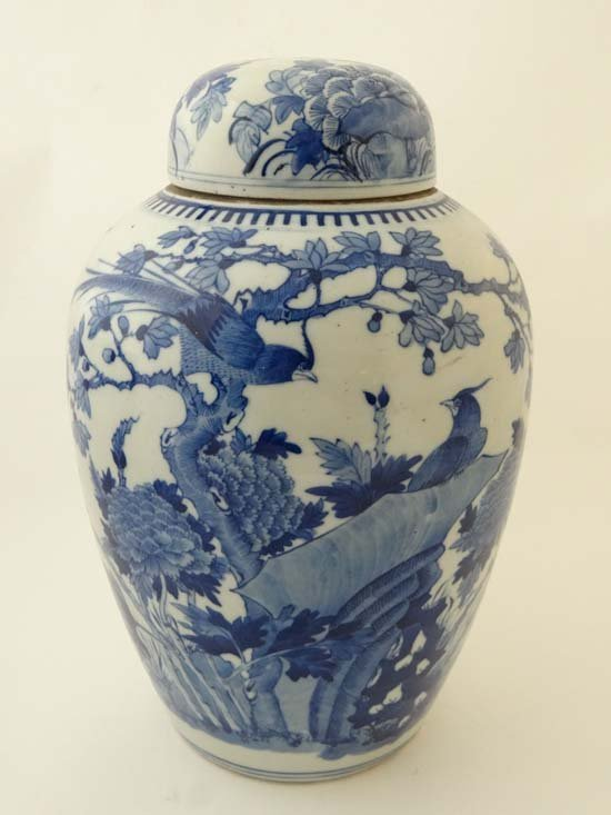 A Chinese blue and white porcelain ginger jar and domed