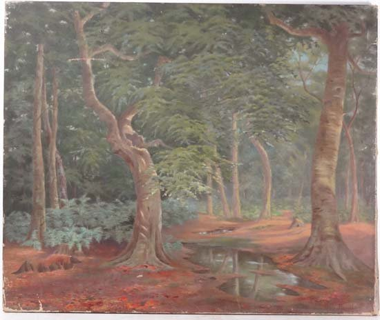 Mary C. Hennell (XIX) Oil on canvas ' Beech Wood,