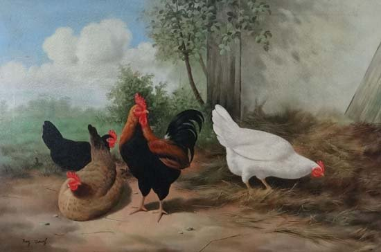 Ray Jacob(c.1900-c.2000) Oil on canvas A Cockerel and