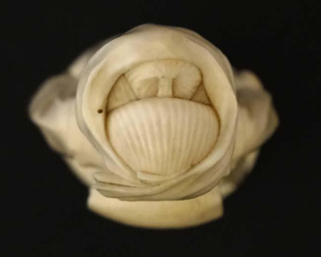 A Japanese Ivory Meiji okimono of a female figure - 4