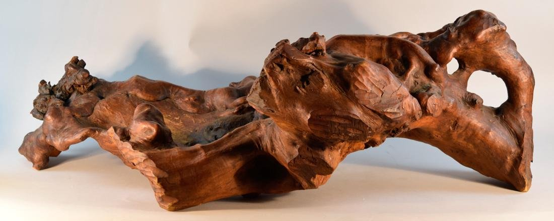 Chinese Root Wood Ram on Stand - Massive Size - 5
