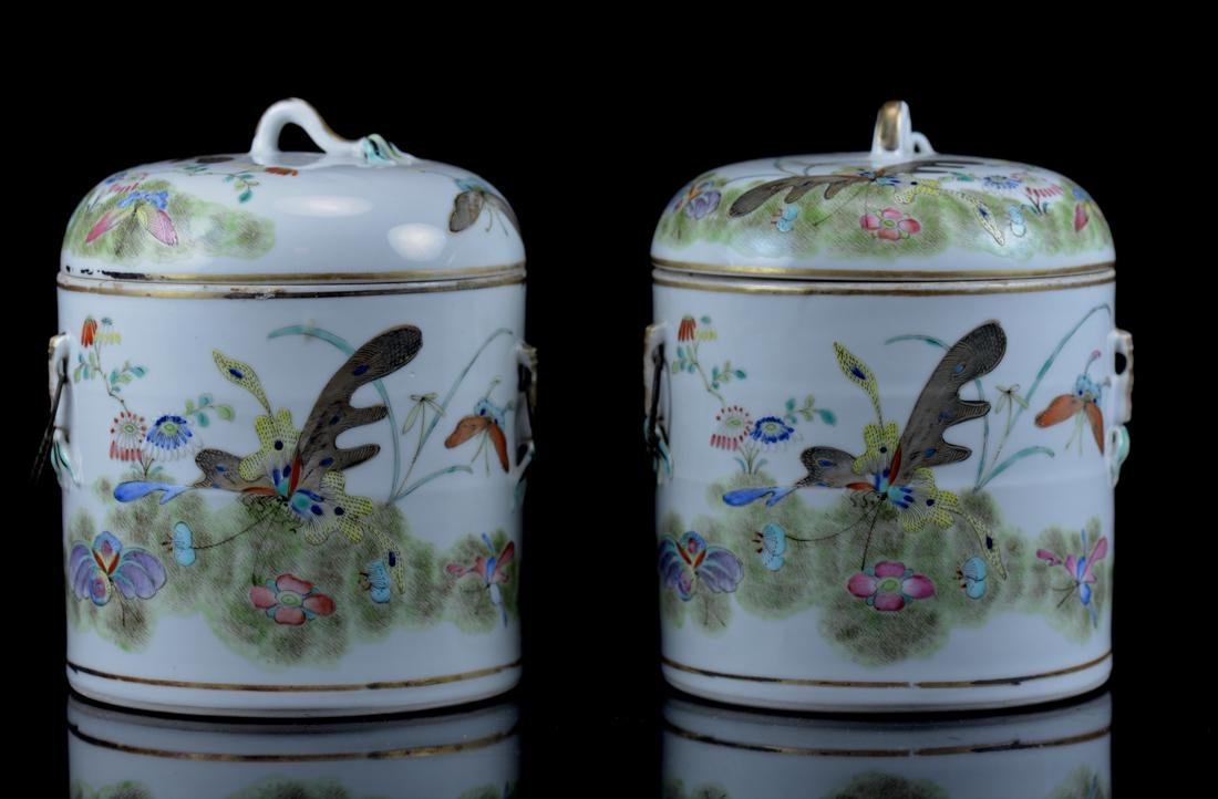 Pair Chinese Porcelain Covered Jar with Butterfly