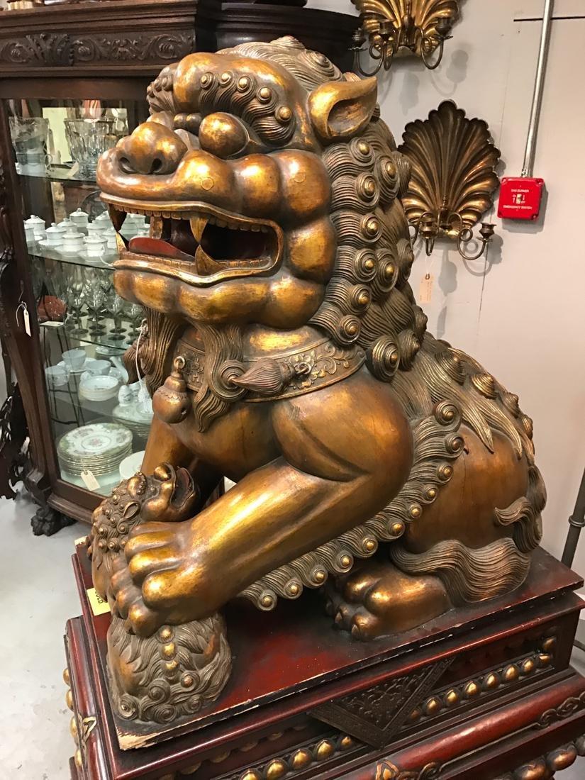 Momumental Pair of Chinese Wood Peking Lion with Gold - 3