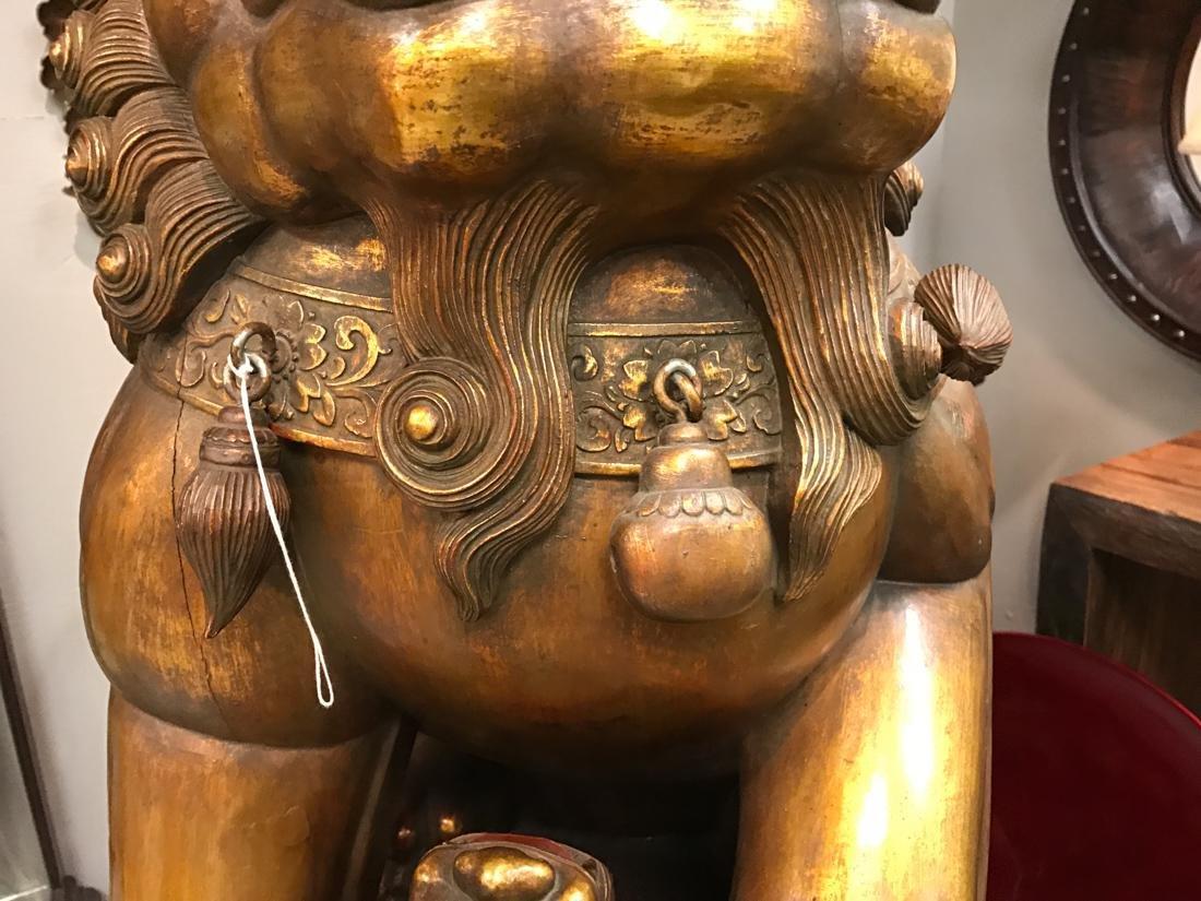 Momumental Pair of Chinese Wood Peking Lion with Gold - 5