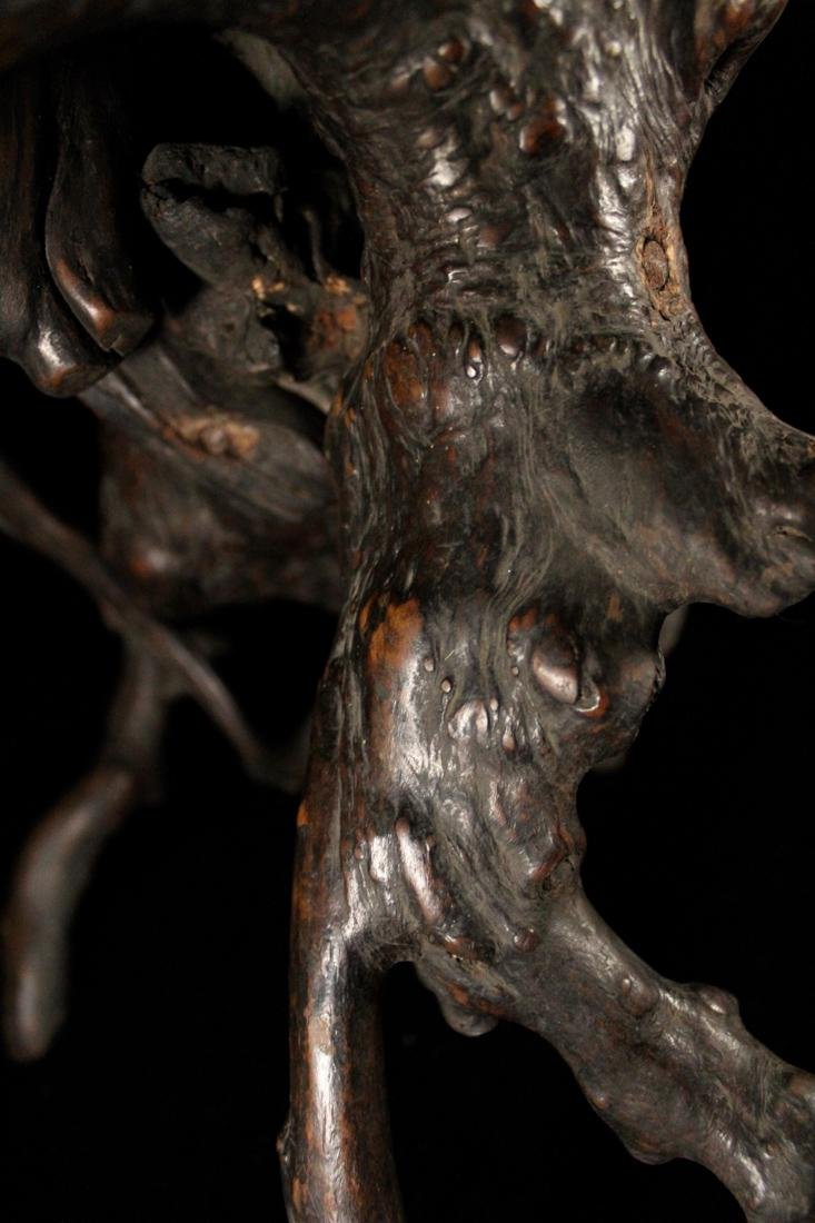 Chinese Scholar Tree Root Stand - 6