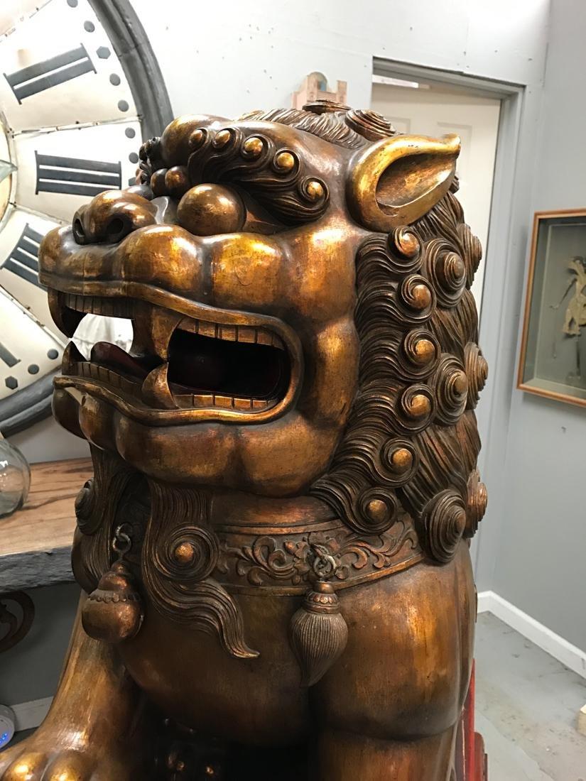 Momumental Pair of Chinese Wood Peking Lion with Gold - 9