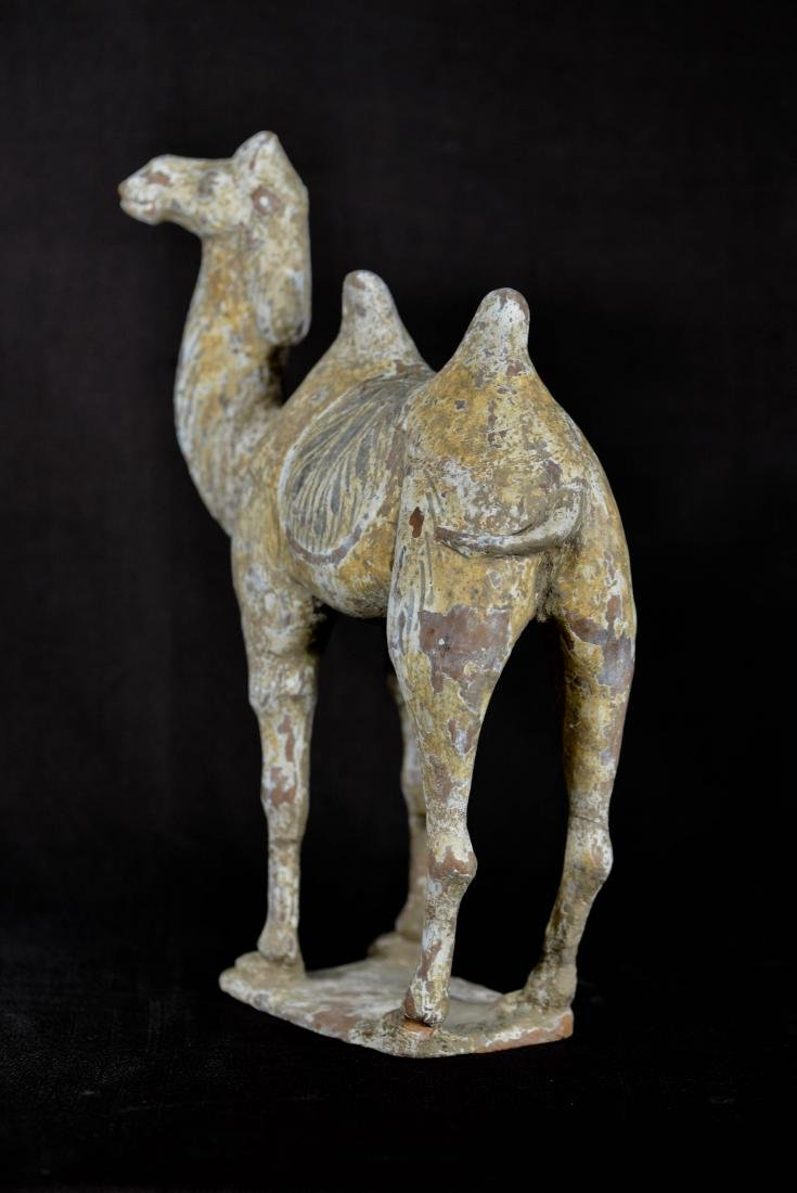 Chinese Han Pottery Camel - Standing - 5