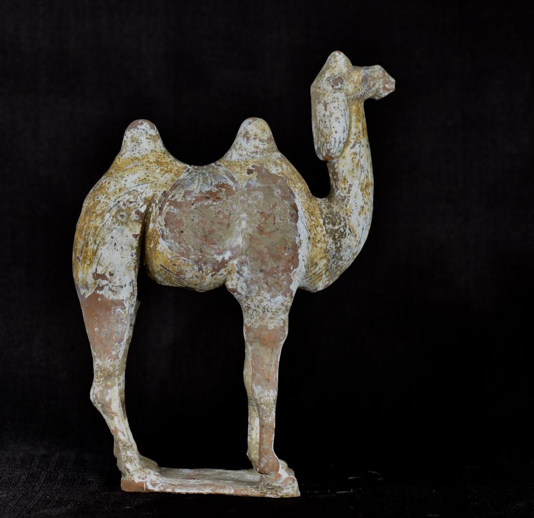Chinese Han Pottery Camel - Standing - 7
