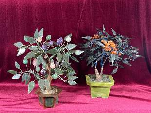 Two Chinese Jade Tree Planters