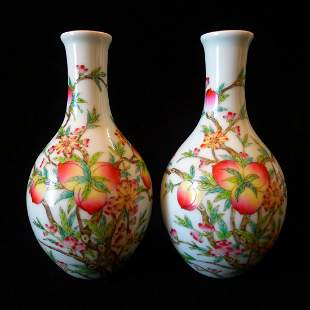Pair of Chinese Antique Famille Rose Vase