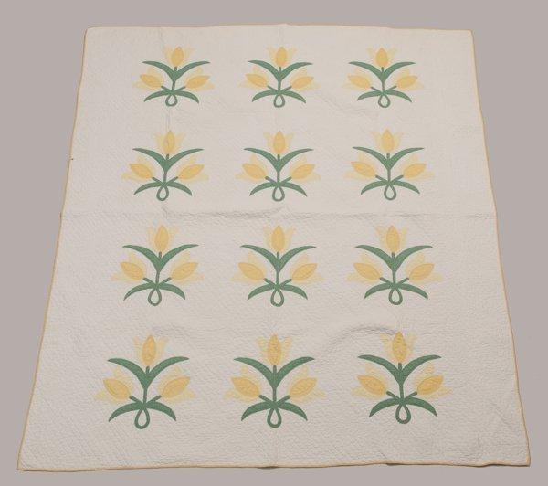 Meadville, Pennsylvania Appliqued Quilt, Ca. 1900 - 191