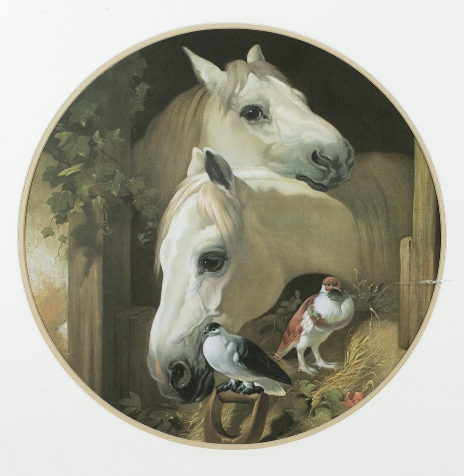 Framed Round Print of Two Horse's with Doves