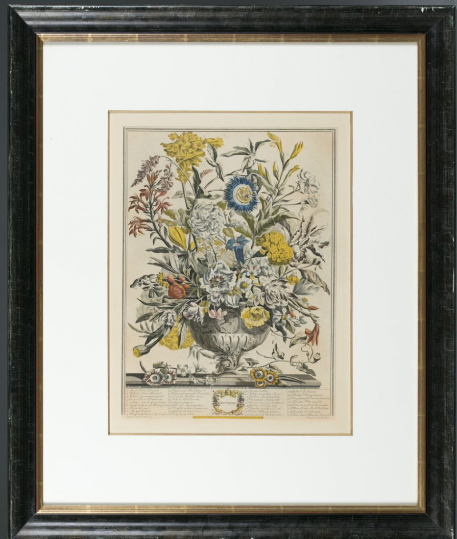 Two (2) Hand-colored Engravings of Botanical Calendars,