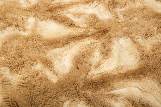 Peruvian Vicuna Fur Blanket - 2