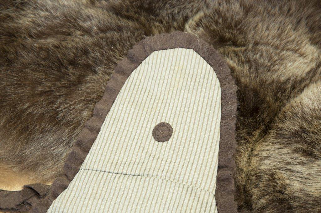 Taxidermy Brown Bear Rug - 6